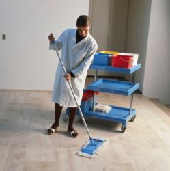 Raumpfleger